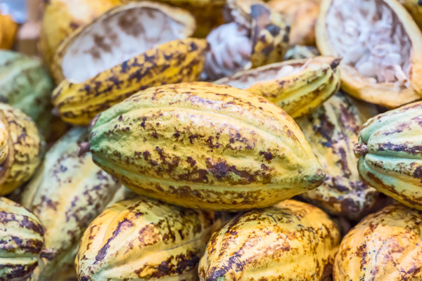 Ghana and Ivory Coast's combined cocoa price action offers key milestone