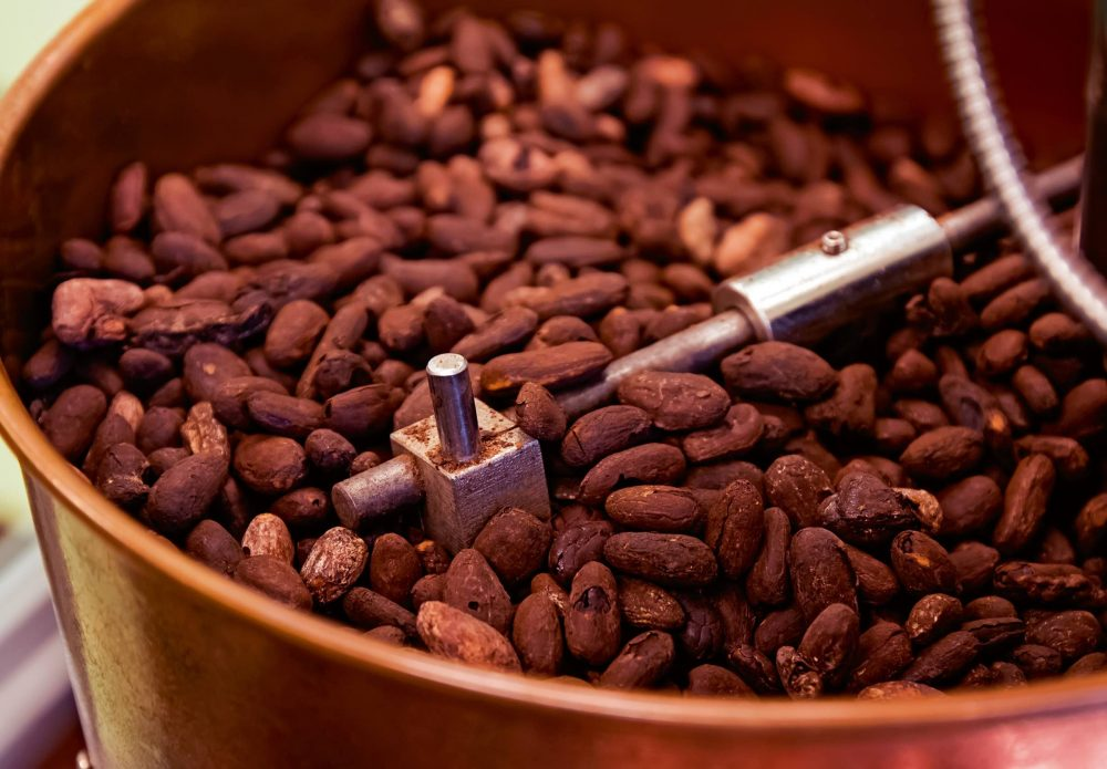Cocoa processing market continues to make headway