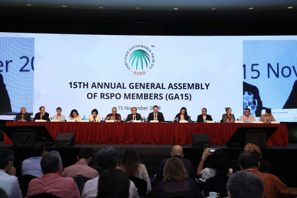 Roundtable standards agreement on palm oil offers a major milestone