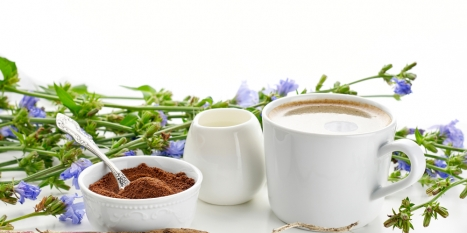 Beneo develops inulin from chicory for product ranges including baked goods